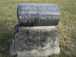 Amelia Bump