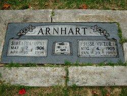 Jesse Victor Arnhart
