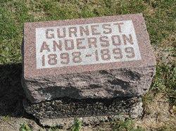 Gurnest Wilber Anderson