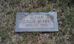 Callie L <i>Smith</i> Burks