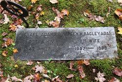 Hepsibeth W. Hepsey <i>Bagley</i> Adams