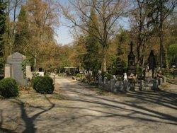 Ustredni hrbitov
