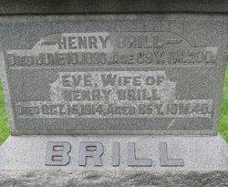 Heinrich Brill