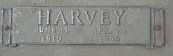 Harvey Briggs