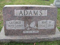 Mae H Adams