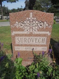 Aniela J <i>Bozek</i> Surovech