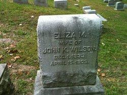Eliza M Wilson