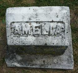 Amelia C Elerding