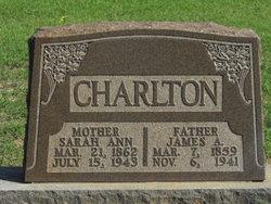 Sarah Ann <i>Bradley</i> Charlton