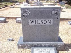 Audra Gayle Wilson