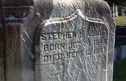 Stephen H Abbott
