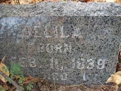 Delilah <i>Lowery</i> Crook