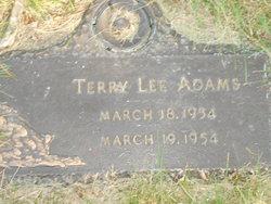 Terry Lee Adams