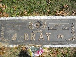 Brian Allen Bray