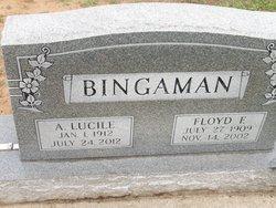 A Lucile <i>Gochenour</i> Bingaman