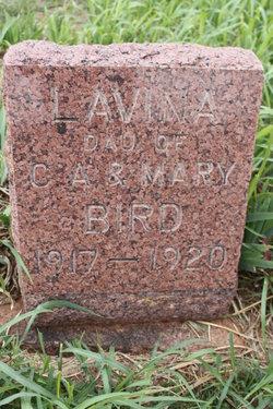 Lavina Gertrude Bird
