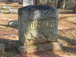 Mary Ann Frances <i>Brantley</i> Benson