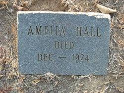 Amelia Hall