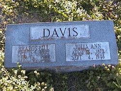 Brazos Bill Davis