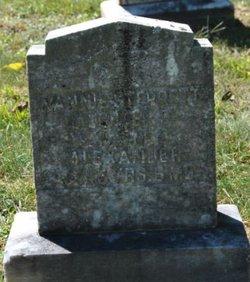 Nannie Sterrett Alexander
