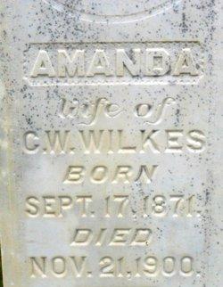 Amanda <i>Drew</i> Wilkes