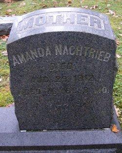 Amanda <i>Schmeck</i> Nachtrieb