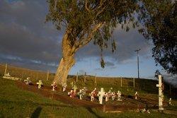 Miwok Cemetery