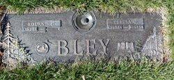 Roland U. Bley