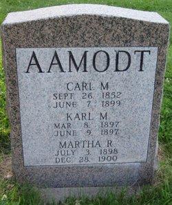 Karl Merrill Aamodt