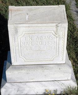 Isaac Newton Newt Adams