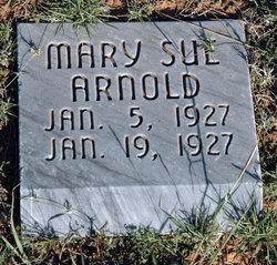 Mary Sue Arnold