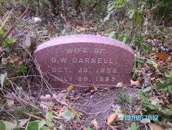 Mary Elizabeth <i>Shafer</i> Darnell