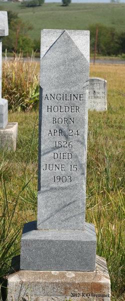 Angiline Holder