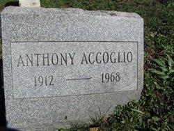 Anthony Accoglio
