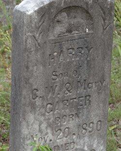 Harry Carter