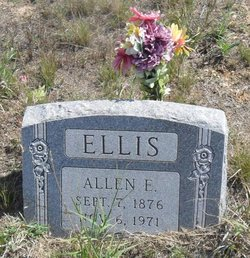 Allen E Ellis