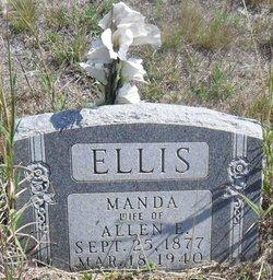 Manda Ellis