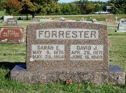 Sarah Ellen <i>Springer</i> Forrester