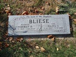 Norman H Bliese