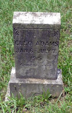 Cleo Adams