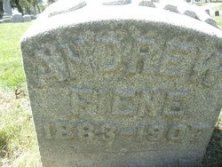 Andrew Fiene