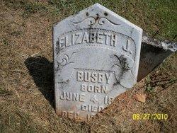 Elizabeth J Busby