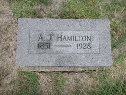 A J Hamilton