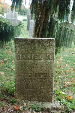 Daniel R Barnes