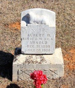 Albert B. Arnold