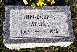 Theodore Samuel Atkins