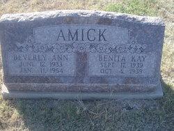 Benita Kay Amick