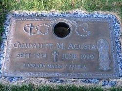 Guadalupe M Acosta