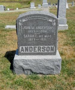 Sarah C <i>Cheesman</i> Anderson