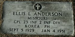 Ellis L Anderson
